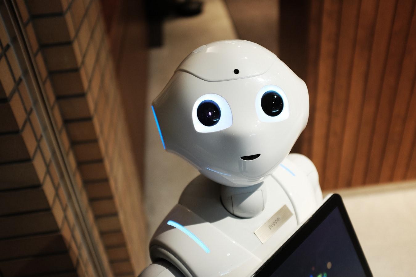 Chatbot - PKOM Webagentur